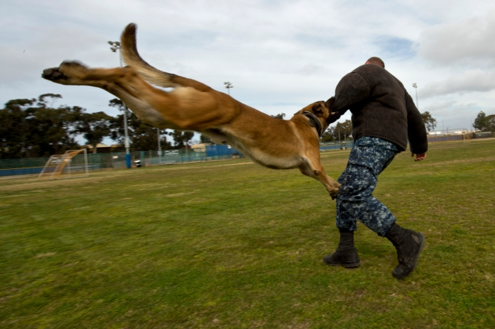 Controlled aggression exercise